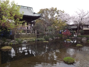 花の寺、今これからが盛りであった。